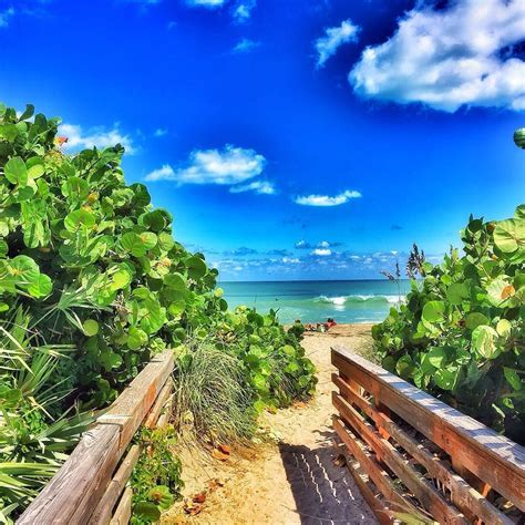 island florida best 25 hutchinson island florida ideas on