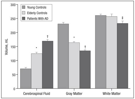 n acetyl creatine in vivo brain concentrations of n acetyl compounds