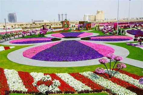 Dubai Flower Garden Dubai Miracle Garden World Flower Garden Xcitefun Net