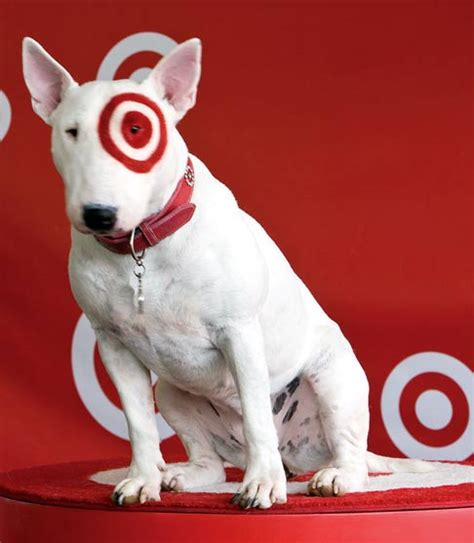 target dog house americanwiki post 1980s media