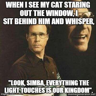 Will Ferrel Memes - will ferrell will ferrell memes pinterest cats the