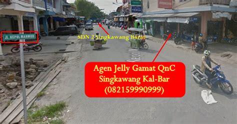 K Link Qnc Jelly Gamat agen jelly gamat qnc singkawang kalbar