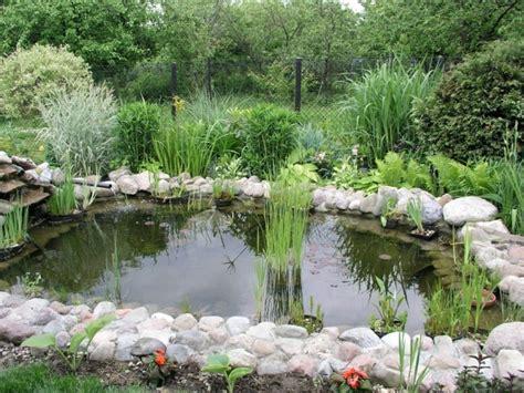 garten schön bepflanzen teich bepflanzen mehr als 70 ideen archzine net