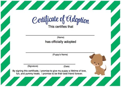 printable animal adoption certificate best 25 puppy party games ideas on pinterest field day