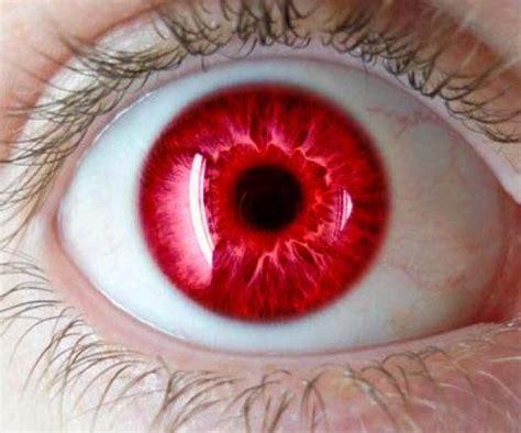 imagenes ojos de colores los colores de ojos m 225 s raros en seres humanos ciencia