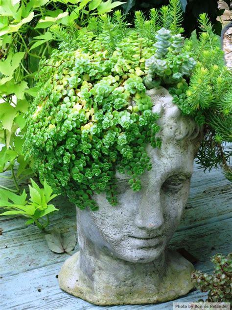 head planter pots for sale best 25 head planters ideas on pinterest