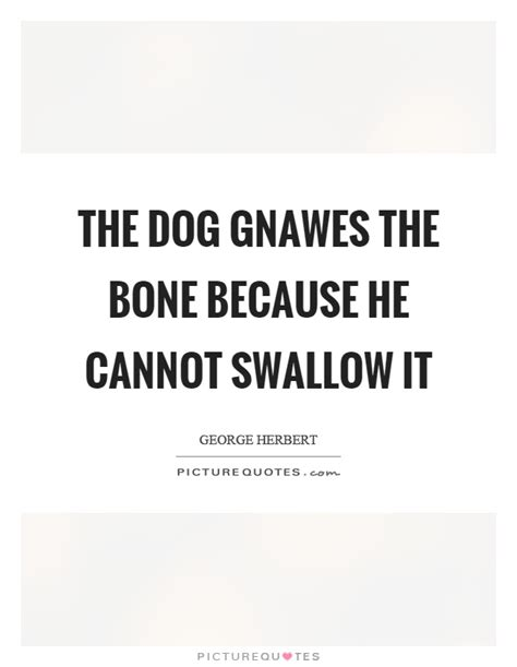 Bone Quotes | Bone Sayings | Bone Picture Quotes