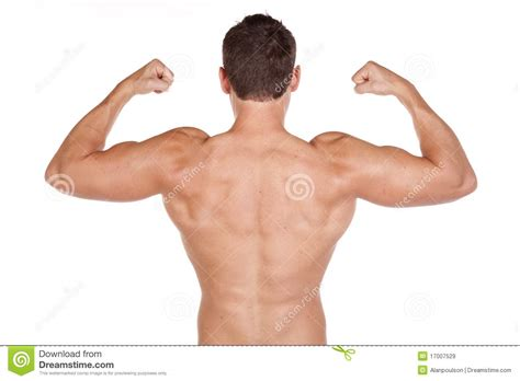 Back On With The by Back Muscles Royalty Free Stock Images Image 17007529