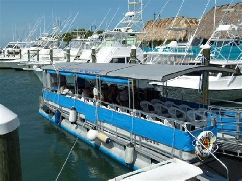 indian river boat tours indian river lagoon and swland boat tours fort pierce