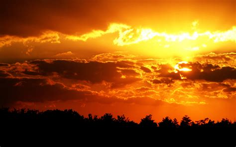Sky Gold gorgeous golden sunset wallpaper hd pictures