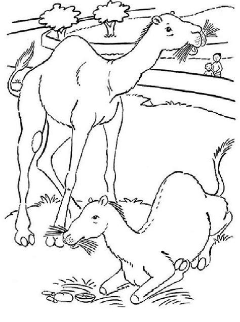 mouse lemur coloring page free aye aye coloring pages