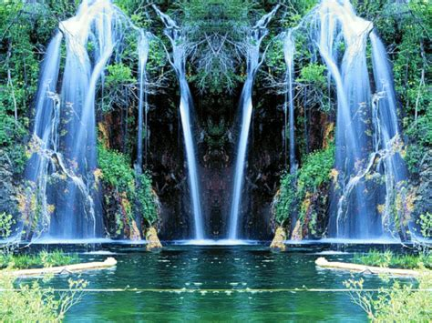 gif wallpaper of nature nature animated gif wallpaper www imgkid com the image