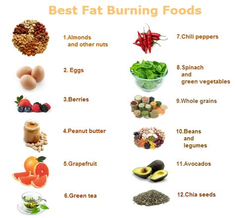 best diet food best burning foods way to healthy