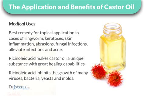 Castor Detox Side Effects by How To Use Castor Packs To Help You Detox