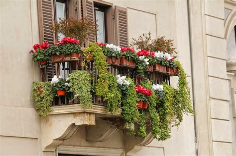selbermach ideen für den balkon bepflanzung balkon idee