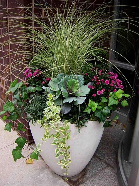 Container Gardening Ideas Quiet Corner Potted Plant Garden Ideas