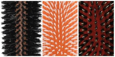 Types Of Hair Brush Bristles by Types Of Hair Brushes And Combs Reed