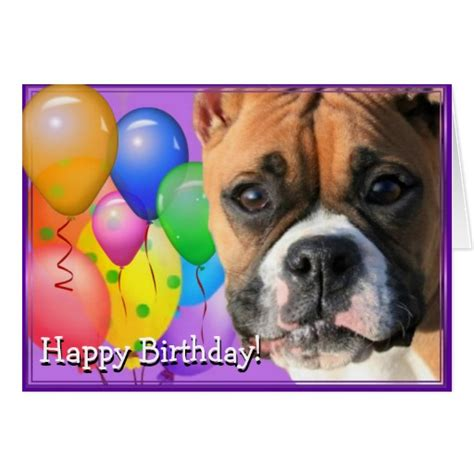 boxer cards birthday boxer greeting card zazzle