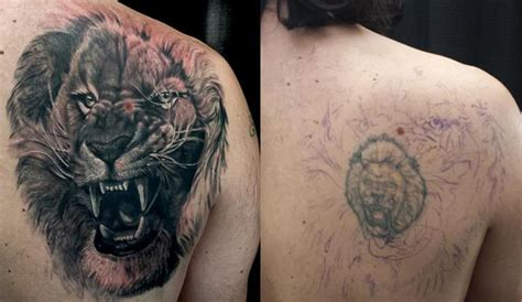 tattoo nightmares lion origin of cover up tattoos best ideas and exles
