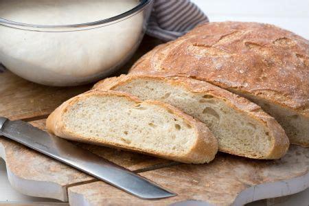 come cucinare il pane ricetta pasta per il pane la ricetta di giallozafferano