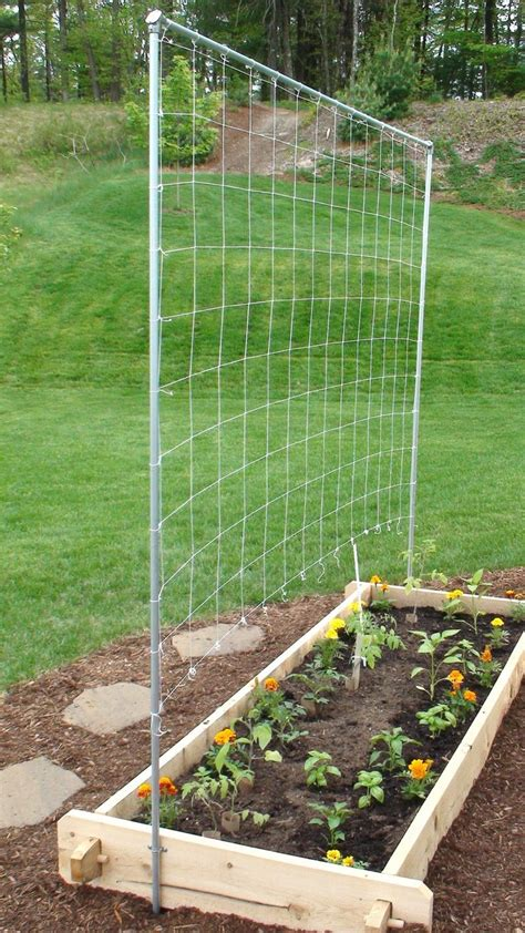 How To Build A Vertical Vegetable Garden by How To Build A Vertical Vegetable Garden