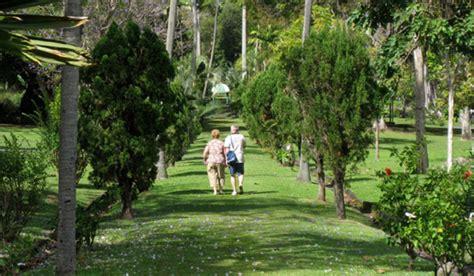 St Vincent Botanical Gardens Captain Bligh S Caribbean Cargo