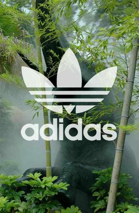 adidas wallpaper weed adidas autre pinterest style jungles and adidas