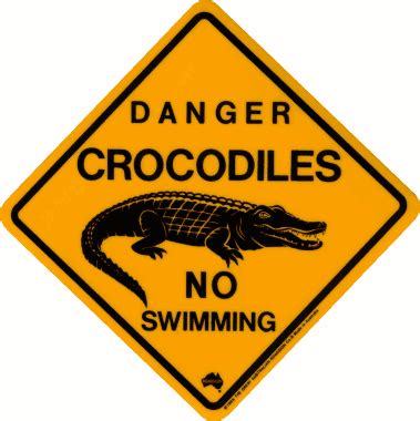 Home Decoration Stickers by Australian Road Signs Crocodile