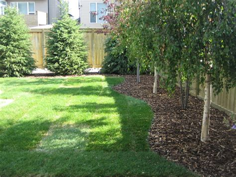 calgary backyard with trees k landscapes