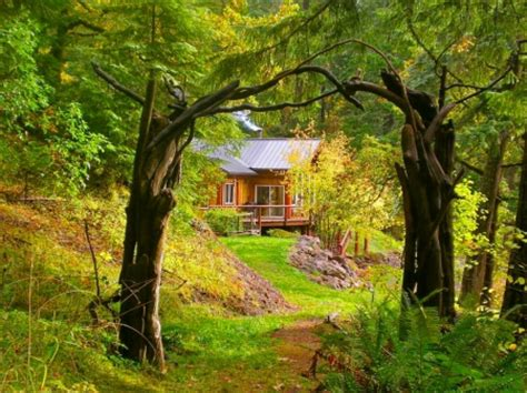 Garden Summer Houses Ireland - forest house forests amp nature background wallpapers on desktop nexus image 1095099