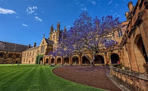 best universities in sydney the quot 10 best quot universities in australia