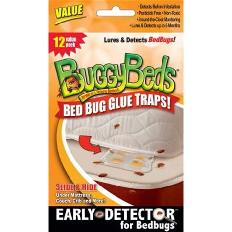 buggybeds value bedbug glue trap detects and lures bedbugs