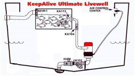 boat livewell installation b boat live well system diagram b free engine image for
