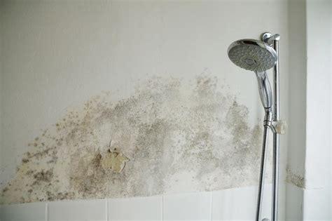 Schimmel In Dusche Entfernen 5279 by Schimmel Im Bad So Entfernen Sie Schimmel Im Badezimmer