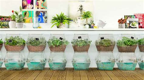 How To Grow An Indoor Vegetable Garden 6 Stylish Systems To Keep Your Organic Vegetable Garden
