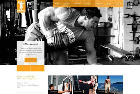 90 Best Business Website Templates 2013 Web Graphic Design Bashooka Fitness Website Design Templates