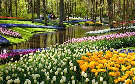 Visit The Keukenhof The Largest Flower Garden In The Flower Garden In Amsterdam