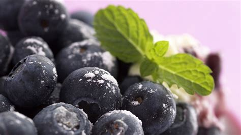 blueberry wallpaper blueberry full hd wallpaper and background 1920x1080