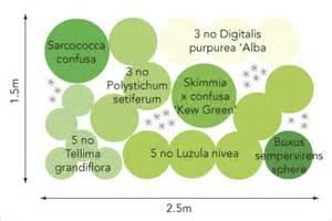 shady border planting contemporary garden design london uk garden designer