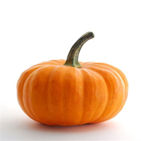 image of pumpkin the bush gourmand pumpkin soup