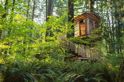 seattle treehouse point featured in animal planets world s coolest treehouse hotels to fall in love with