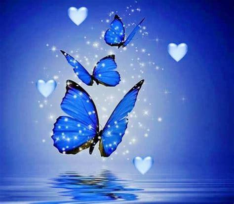 imagenes de mariposas azules con frases imagenes de paisajes de mariposas