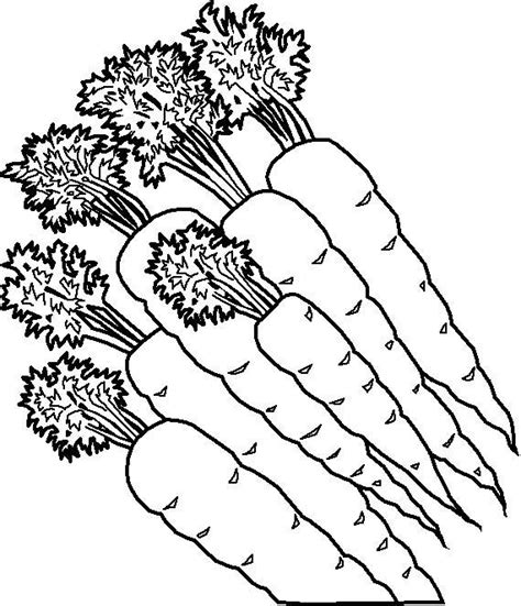 Free Fruit And Vegetables Coloring Pages Fruits And Vegetables Coloring Page