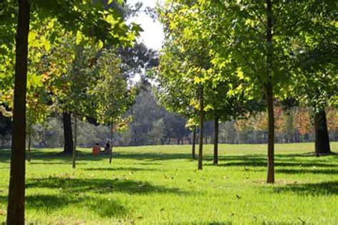 imagenes zonas verdes chile desarrollo sustentable 187 estudio brit 225 nico revela