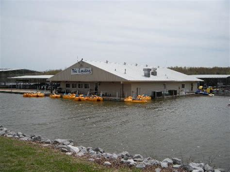 prizer point boat rentals kentucky lakes family fun picture of kentucky lakes