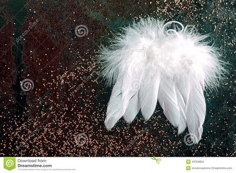 soft white christmas angel wings stock photo image