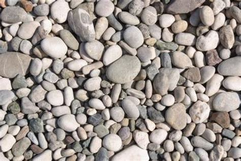 types of landscaping the best type of rock gravel for landscaping hunker