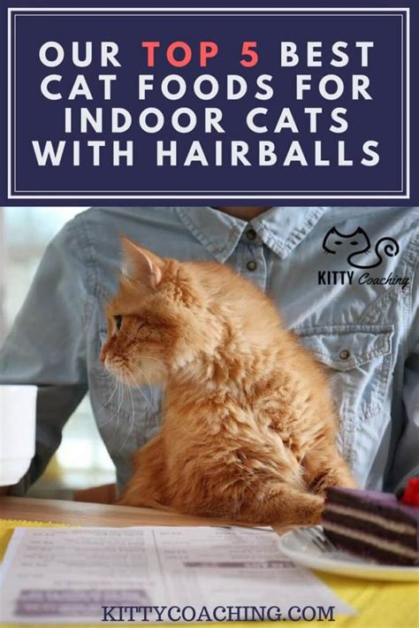 our top 5 best cat foods for indoor cats with hairballs feb 2018