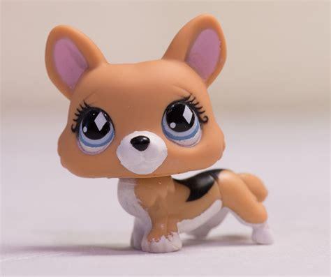 ebay puppy littlest pet shop lps 639 brown corgi puppy w blue ebay