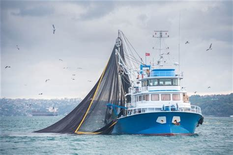 insurance on fishing boat insuring fishing boats in the maritimes insurance business